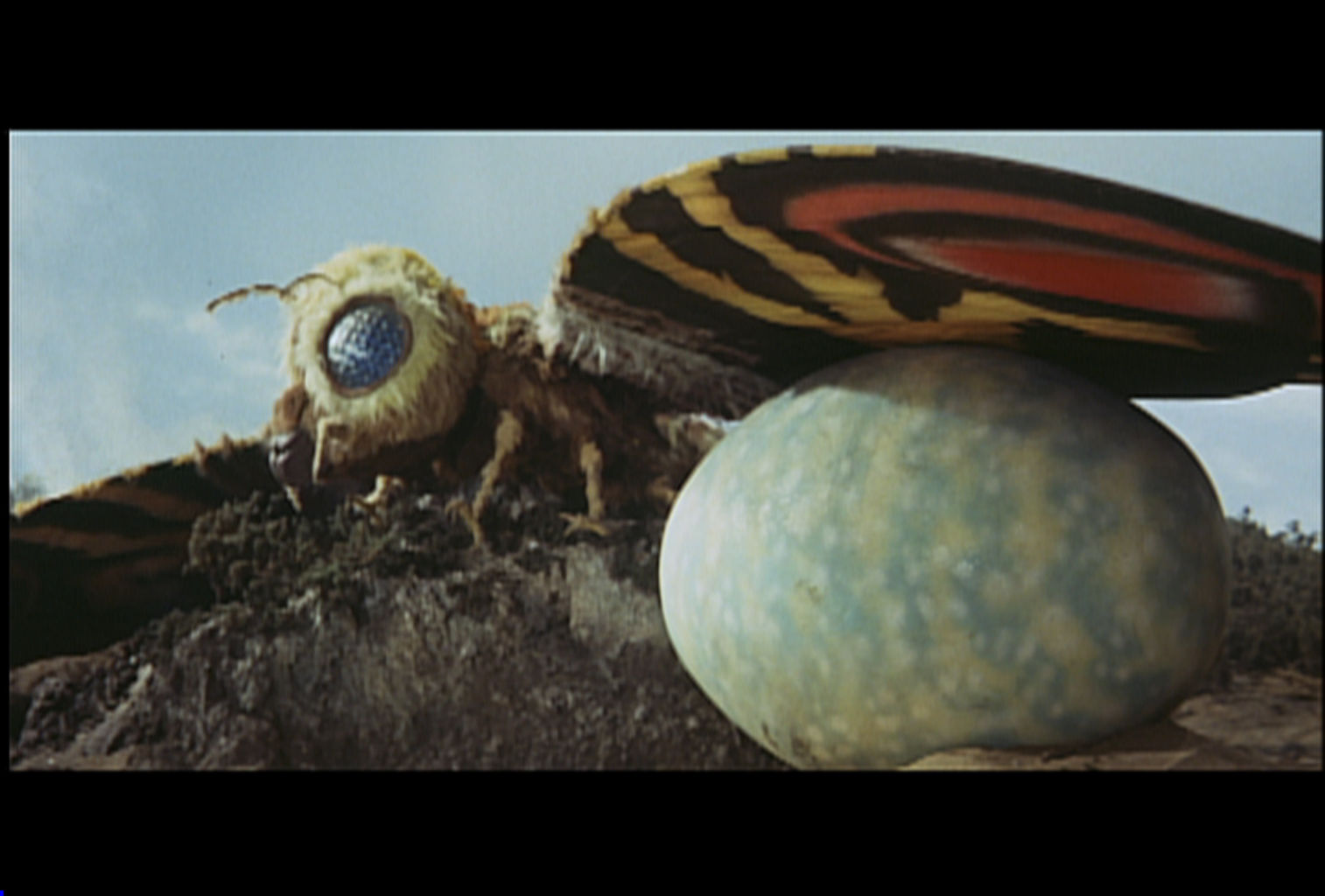 The newly hatched Mothra caterpillars head for battle.