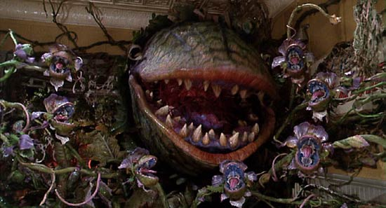 Audrey the man-eating plant in LITTLE SHOP OF HORRORS (1986)