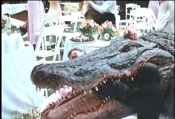 Ramon the alligator crashes a wedding party in the tongue-in-cheek ALLIGATOR (1980).