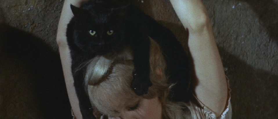 The Black Cat atop the head of its dead mistress (Joyce Jameson)