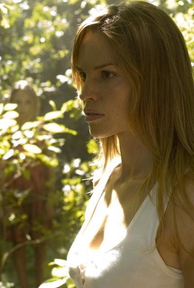 Hilary Swank as Katherine Winter