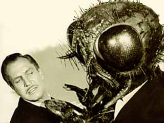 E24AFD2DC9 The Fly (1958)   A Retrospective