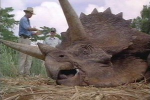 The live-action Triceratops was the only dino to go to Hawaii