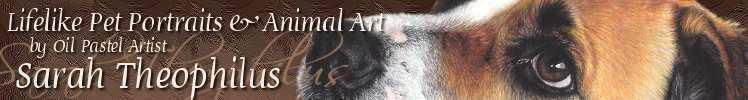Pet Portraits by Sarah